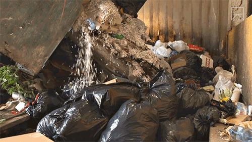 Landfill-thumbnail